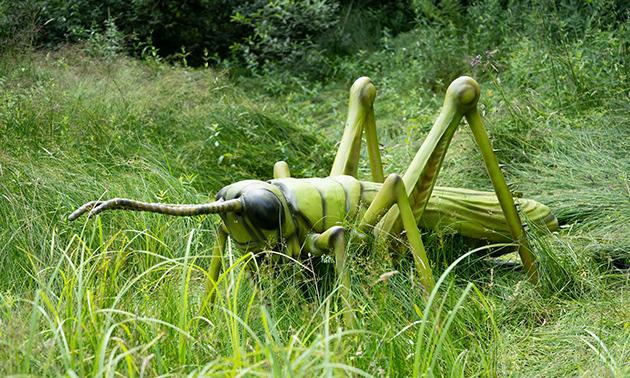 Big Insects bij Paleis Soestdijk in Baarn