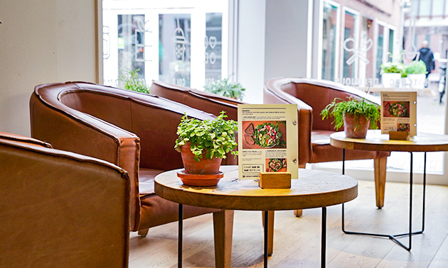 Chocolate Company Café Amersfoort