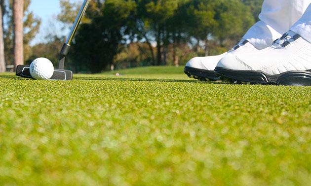 Golftotaal