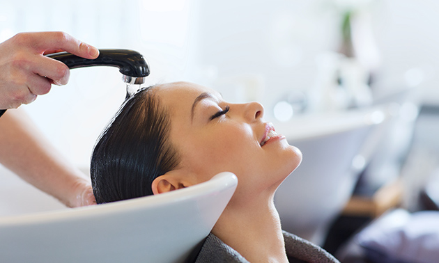 Hairboost Balkbrug