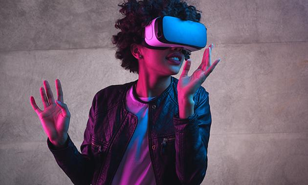 Het Virtuele Speelhuis