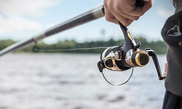 Koi, vijver & fishing Dirkshorn