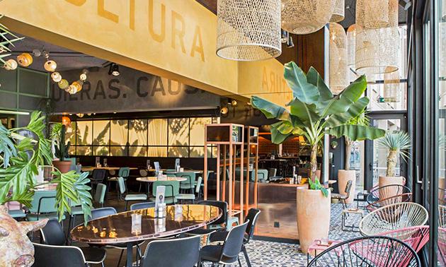 Popocatepetl The Mexican Arnhem