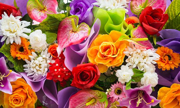 Reintjes Bloemen