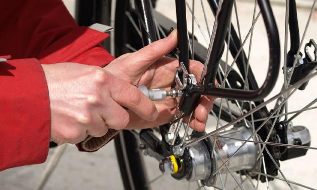 Roberto Bikes Breda