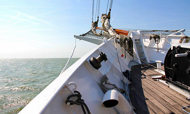 Stedemaeght Sailing Charters