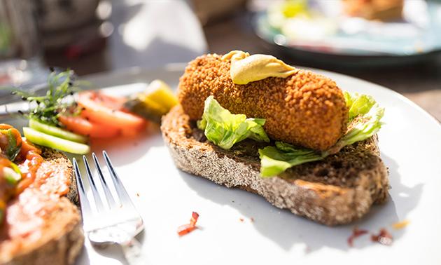 Terra Nova Burgers & More