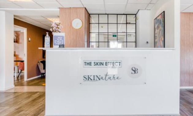 The Skin Effect