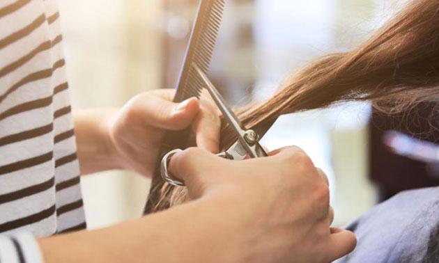 Triumph Art of Hair