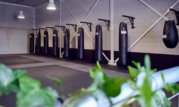 Vechtsportcentrum Zwolle