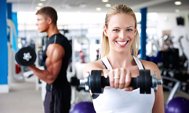 Westenholte Fysiotherapie & Fitness