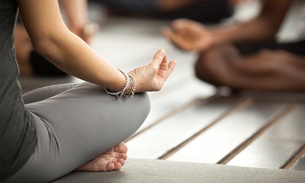 Yoga By Haleh