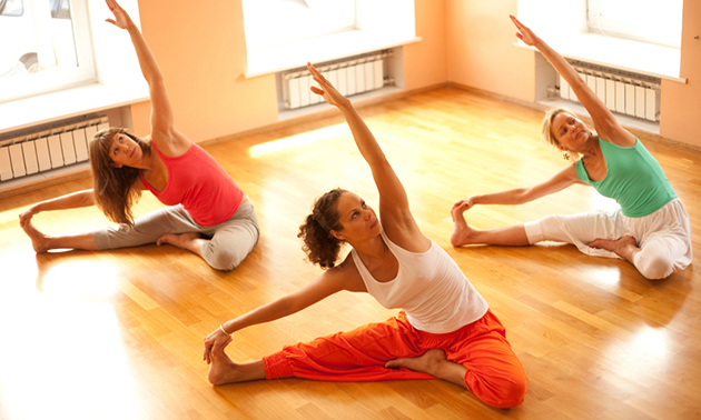 Yoga Studio Toermalijn Mierlo