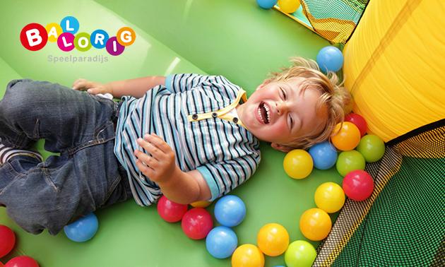 Entree voor indoor kinderspeelparadijs Ballorig