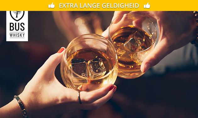 Rondleiding bij Bus Whisky Distillers