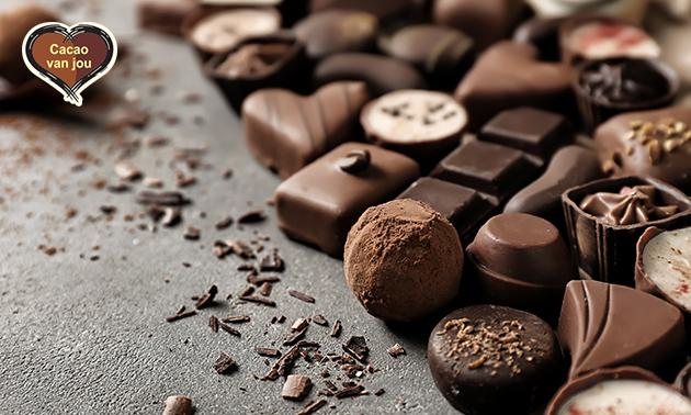 Workshop bonbons maken (2,5 uur) bij Cacao van jou