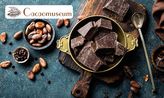 Gratis thuisbezorgd: chocoladeproeverij + entreeticket