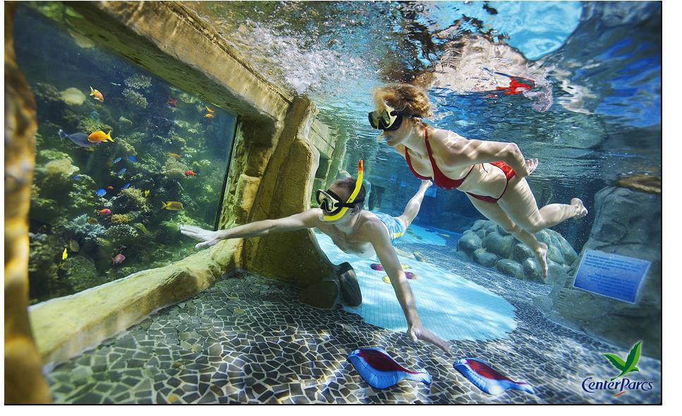 Alkmaar by social deal korting tot wel 90 for Zwembad s hertogenbosch