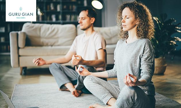 Online introductiecursus yoga en meditatie