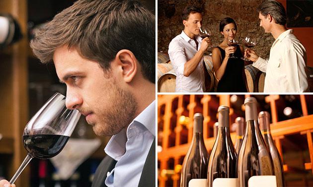 Wijnexperience + bites bij High5 Wine Bistro