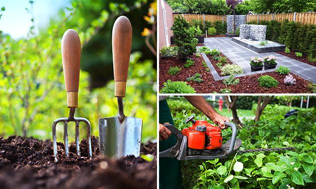 4 uur tuinonderhoud + advies