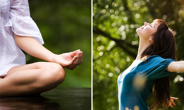 Mindfulnessworkshop (2 uur) of -cursus