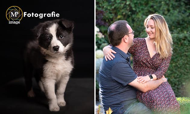Fotoshoot + digitale foto's + 2 afdrukken