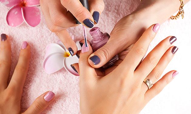 Manicurebehandeling naar keuze (60 min)