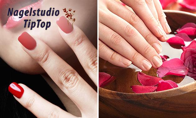 Manicurebehandeling + gellak (45 of 60 min)