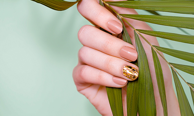 Manicurebehandeling + nagellak (30 of 60 min)