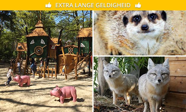 Entree tot Natuur- en Dierenpark Brüggen