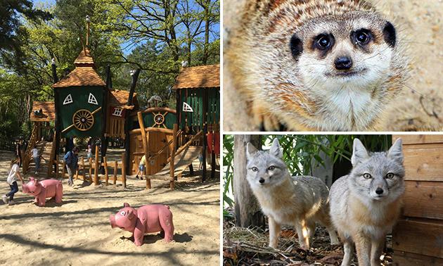 Eintritt in den Natur- und Tierpark Brüggen