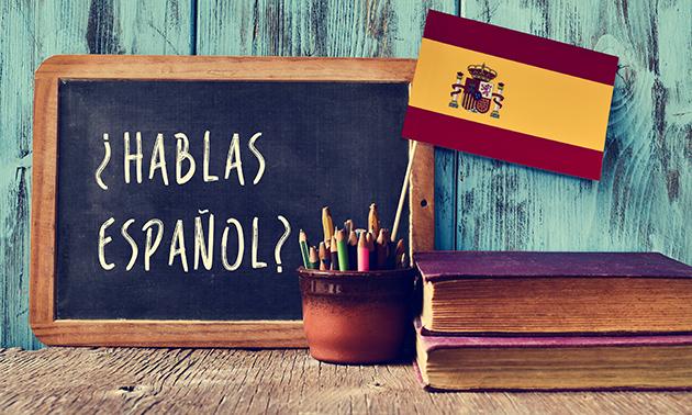 Cursus Spaans voor beginners + lesmateriaal