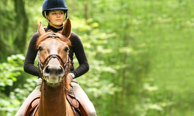 1 of 10 (privé)paardrijlessen