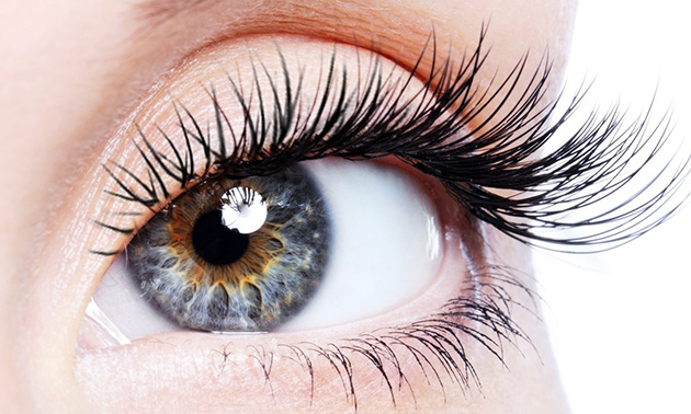 Wimperextensions one by one of volume lashes