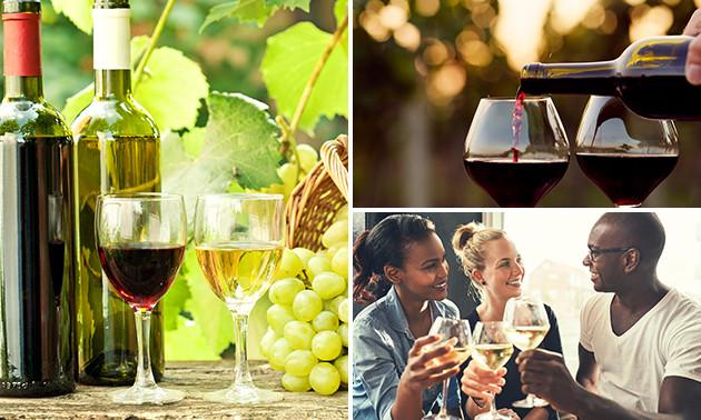 Wijnproeverij met 14 wijnen