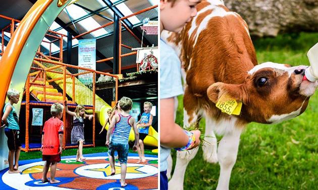 Entree voor Speel- en IJsboerderij De Drentse Koe