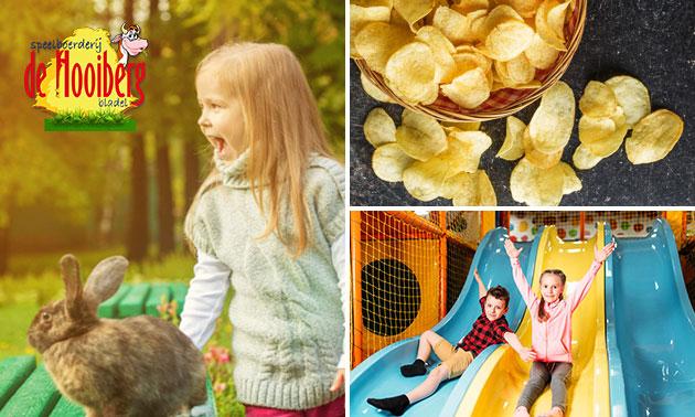Entree speelboerderij + chips + ijsje