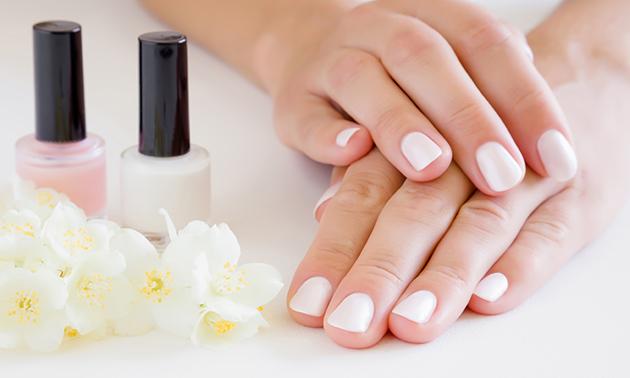 Manicurebehandeling evt. + gellak
