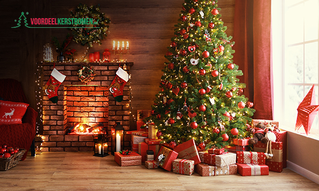 Thuisbezorgd: Nordmann-kerstboom + sneeuwspray